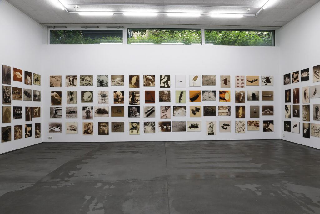 Paul Kooiker 2015 Galerie Zink Berlin Mitte