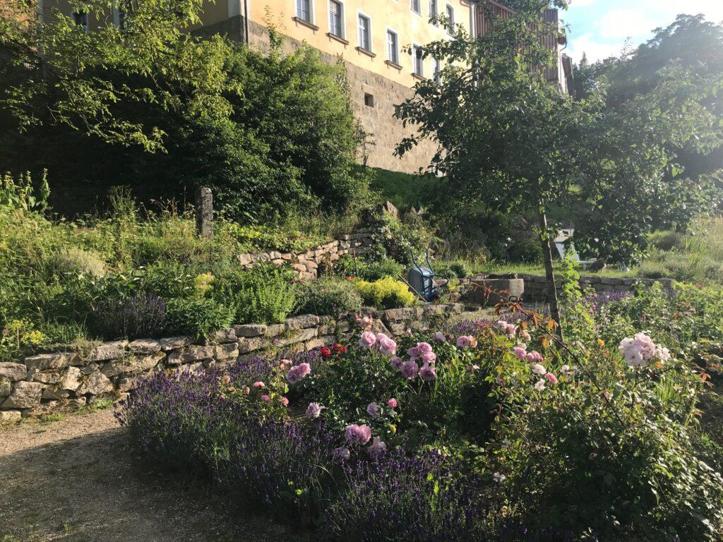 Petersberg Apartments garden